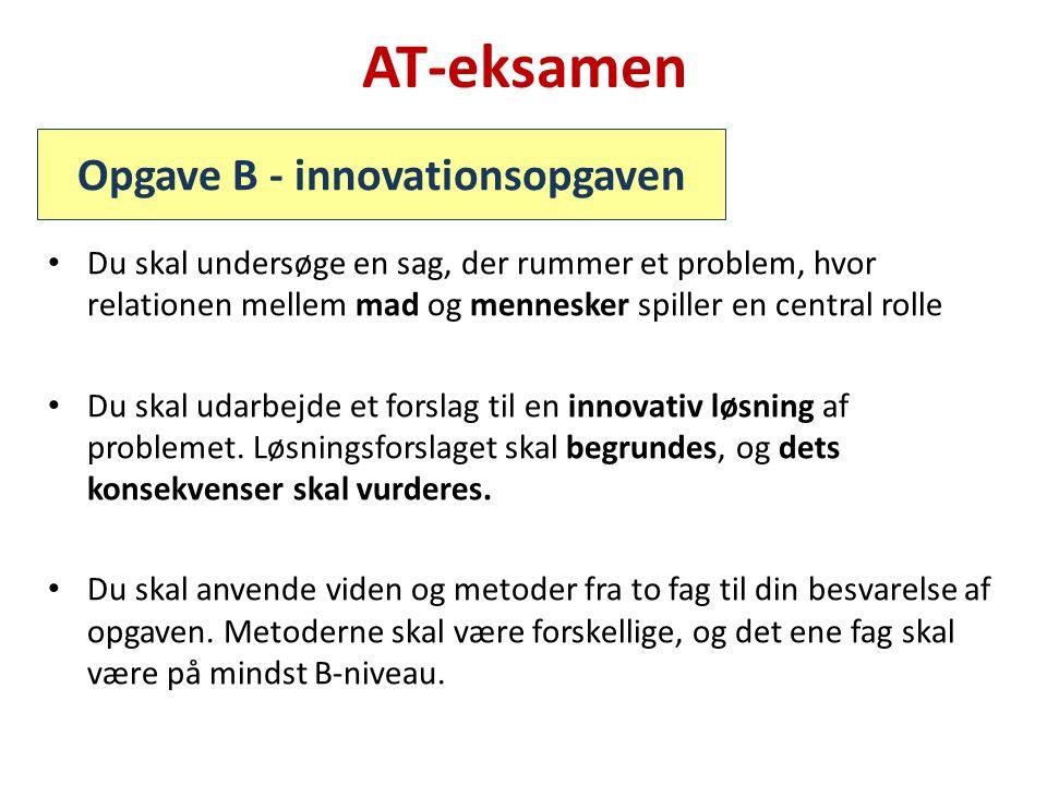 Opgave B - innovationsopgaven