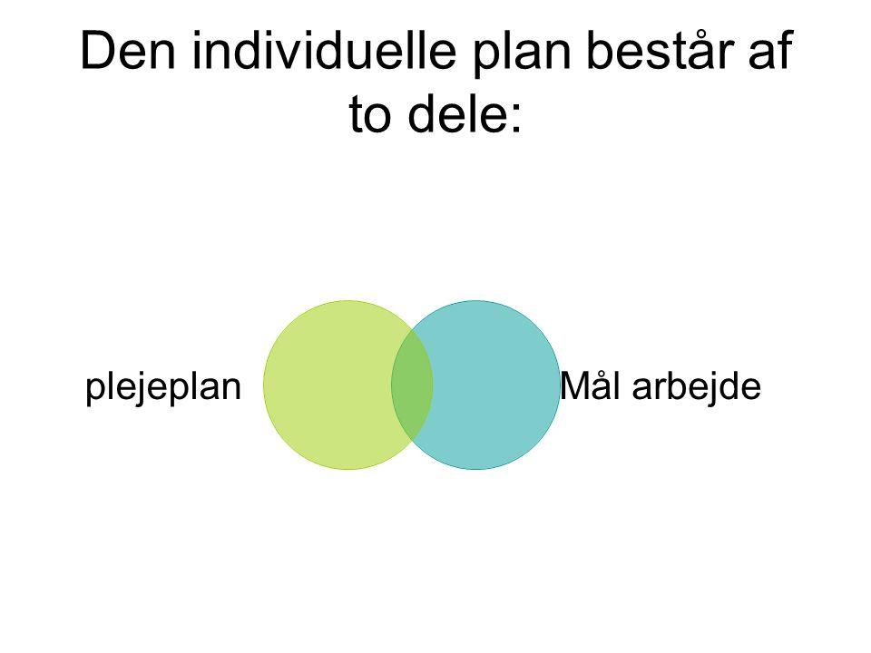 Den individuelle plan består af to dele: