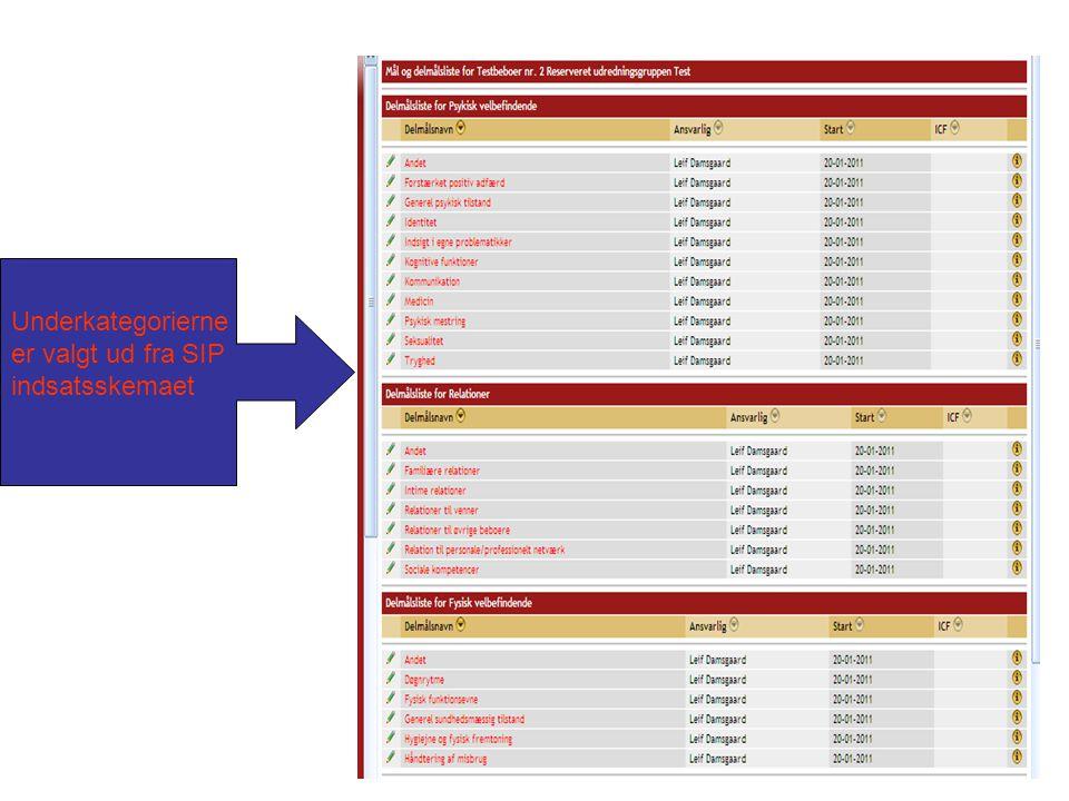 Underkategorierne er valgt ud fra SIP indsatsskemaet