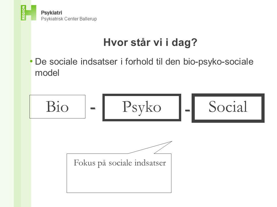 Bio - Psyko Social - Hvor står vi i dag
