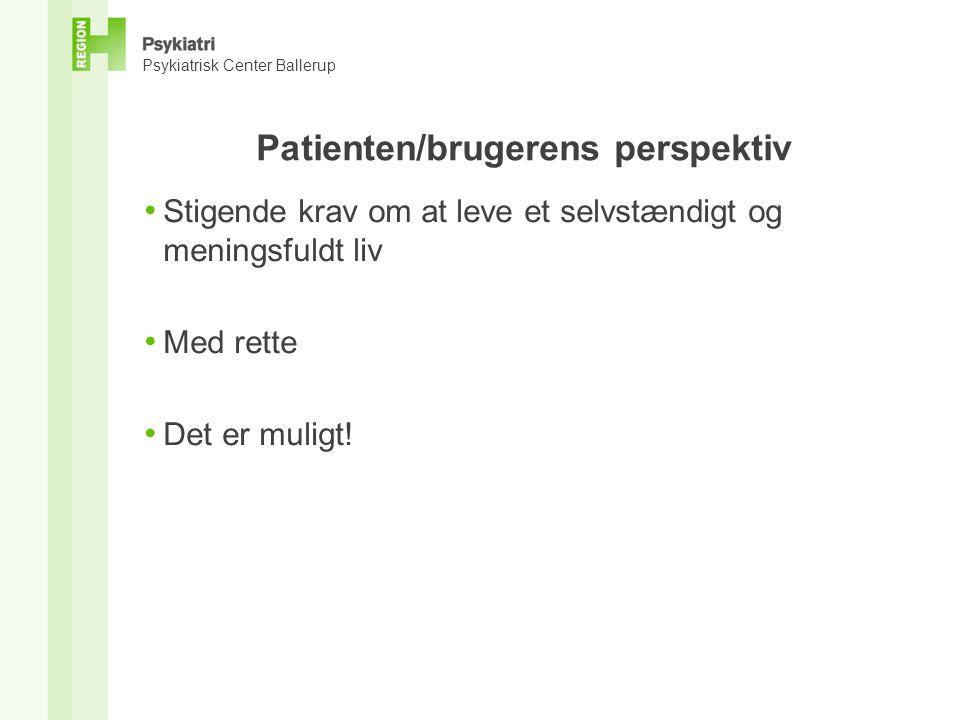 Patienten/brugerens perspektiv