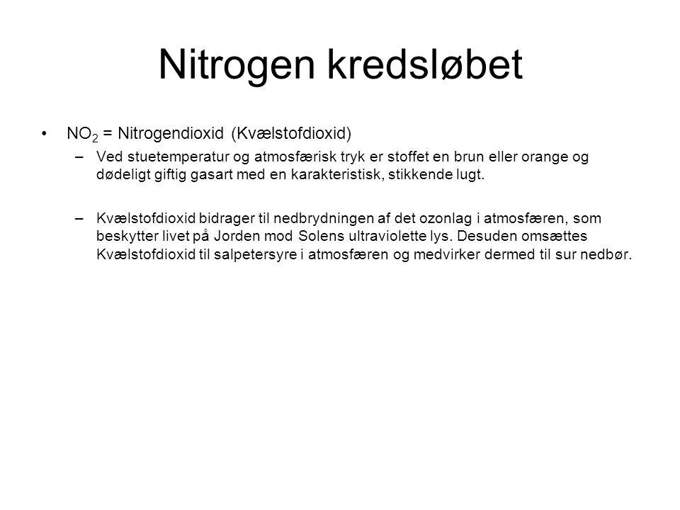 Nitrogen kredsløbet NO2 = Nitrogendioxid (Kvælstofdioxid)