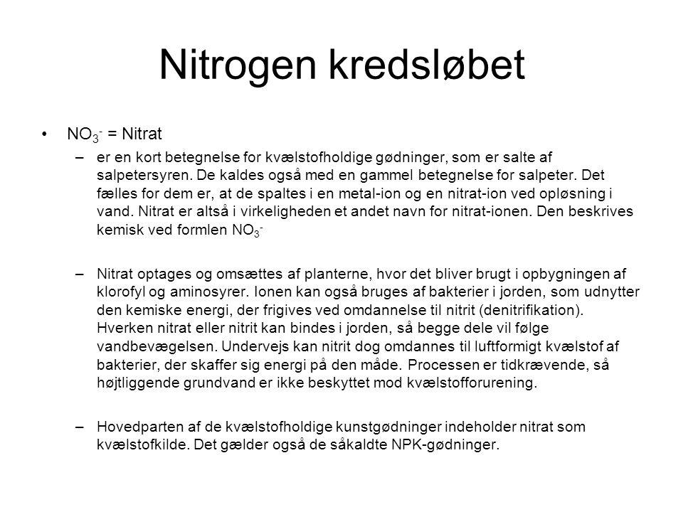 Nitrogen kredsløbet NO3- = Nitrat