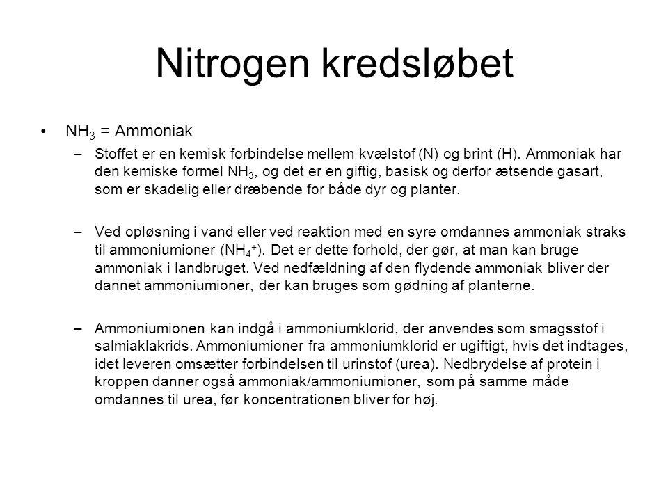 Nitrogen kredsløbet NH3 = Ammoniak