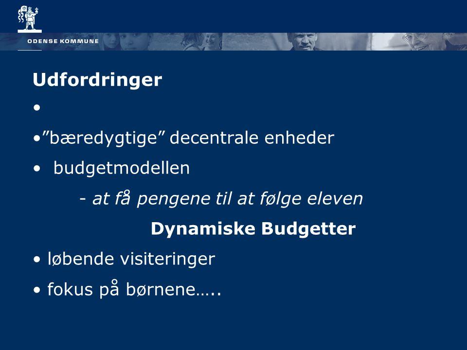 Udfordringer bæredygtige decentrale enheder budgetmodellen