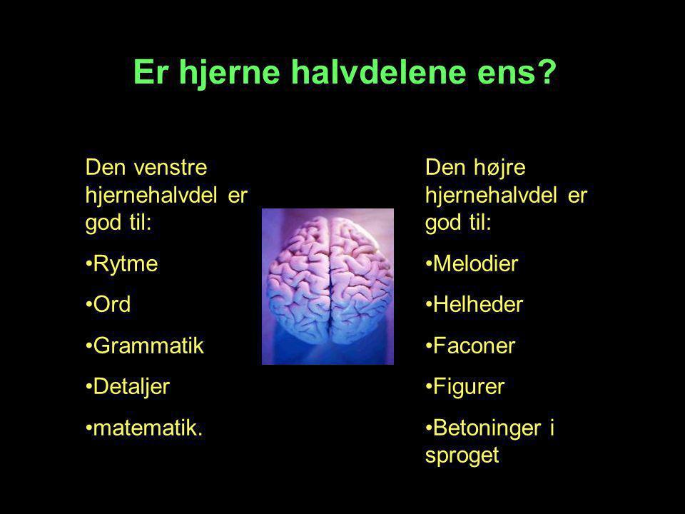 Er hjerne halvdelene ens