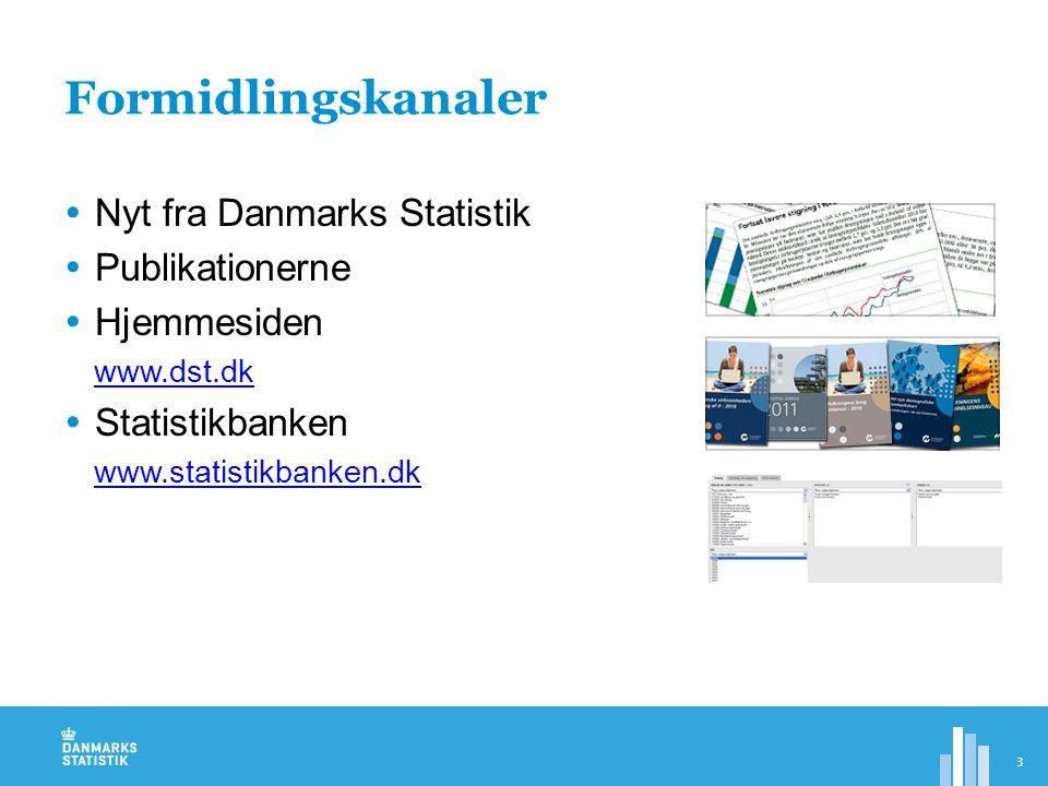 Formidlingskanaler Nyt fra Danmarks Statistik Publikationerne