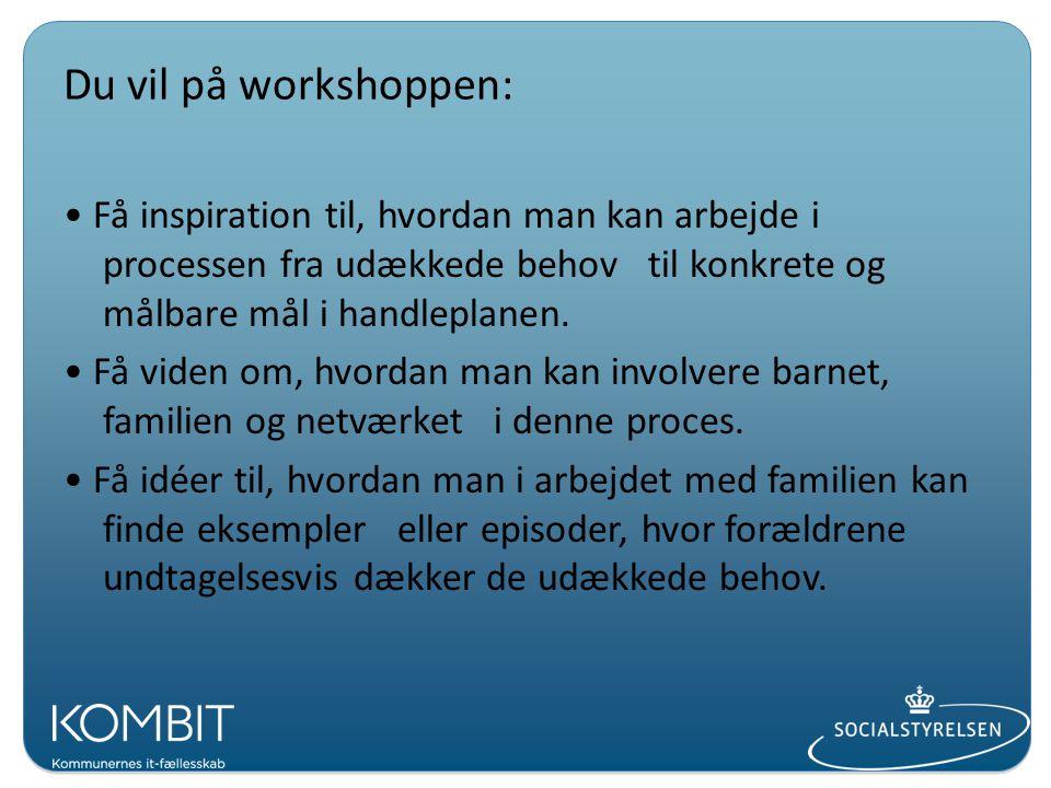 Du vil på workshoppen: