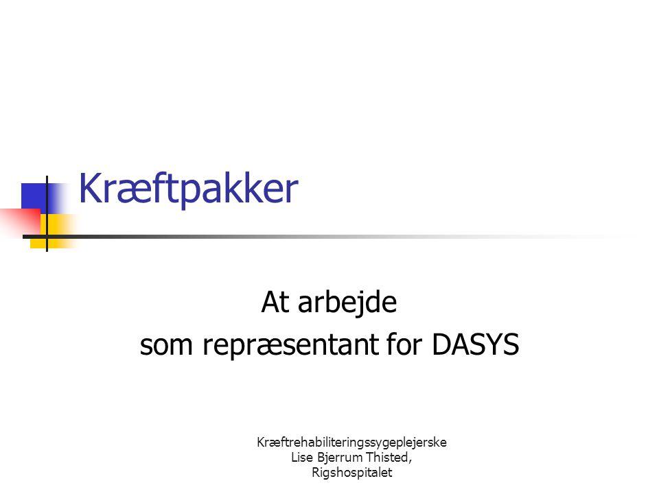 At arbejde som repræsentant for DASYS