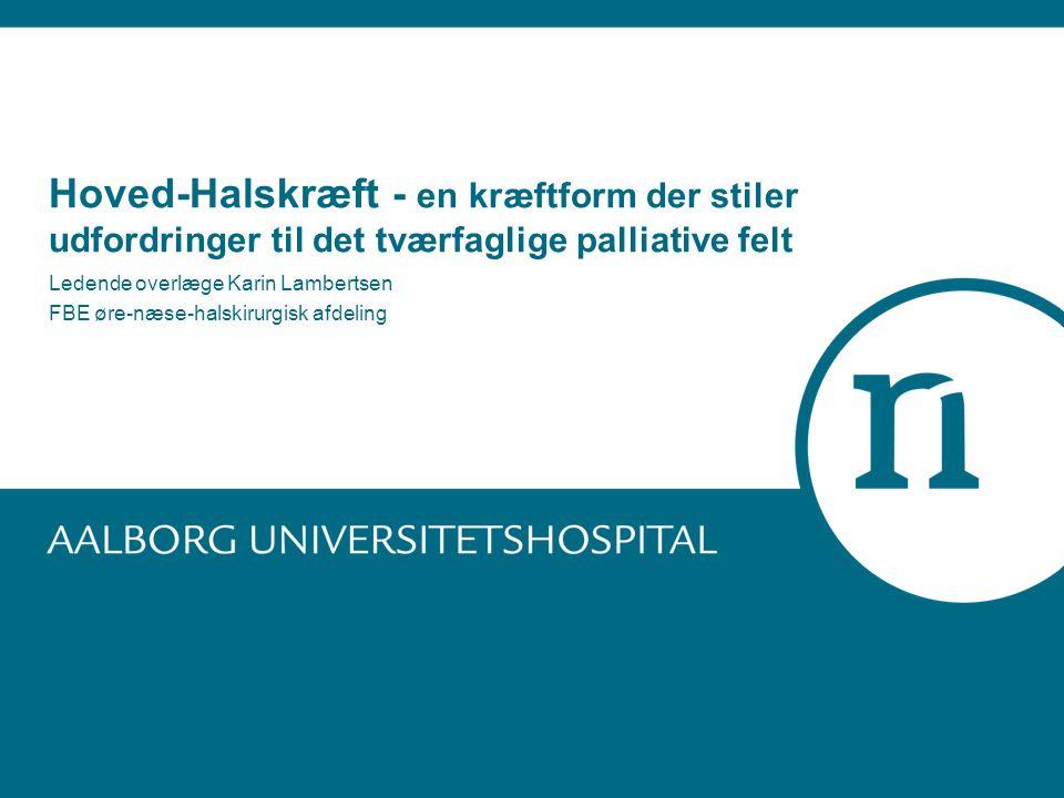 Ledende overlæge Karin Lambertsen FBE øre-næse-halskirurgisk afdeling