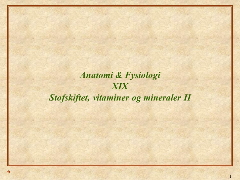 Anatomi & Fysiologi XIX Stofskiftet, vitaminer og mineraler II
