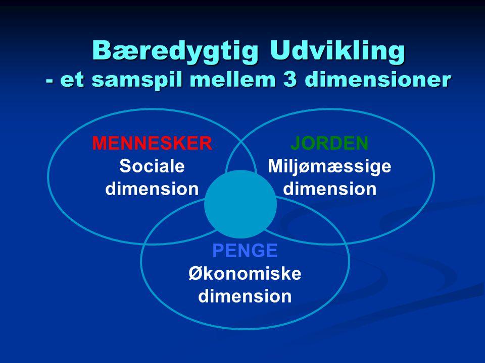 Bæredygtig Udvikling - et samspil mellem 3 dimensioner