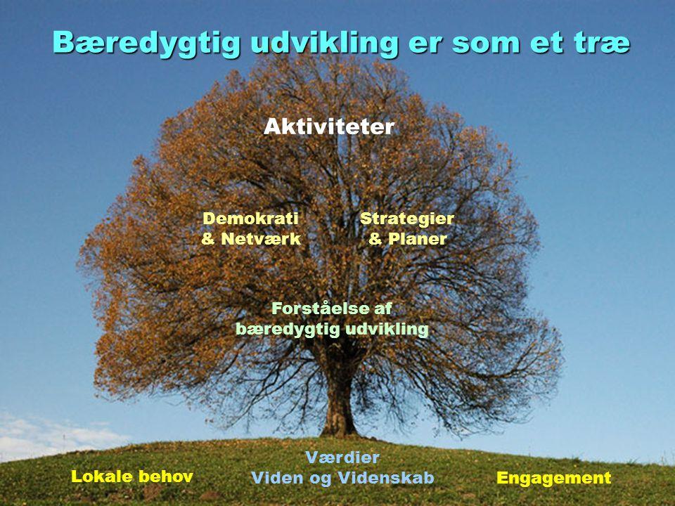 Bæredygtig udvikling er som et træ