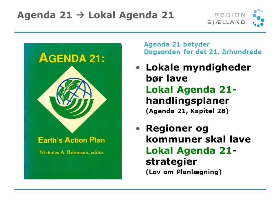 Lokale myndigheder bør lave Lokal Agenda 21- handlingsplaner