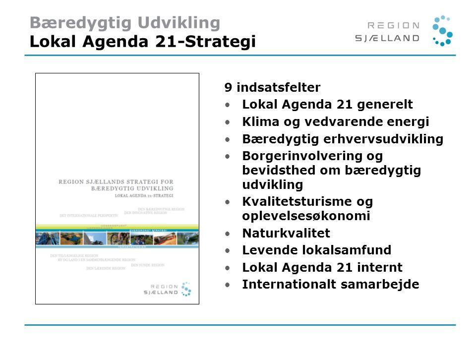 Bæredygtig Udvikling Lokal Agenda 21-Strategi