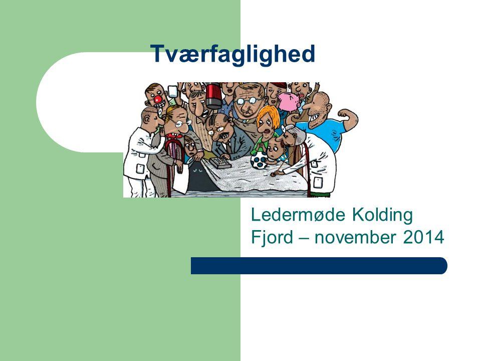 Ledermøde Kolding Fjord – november 2014
