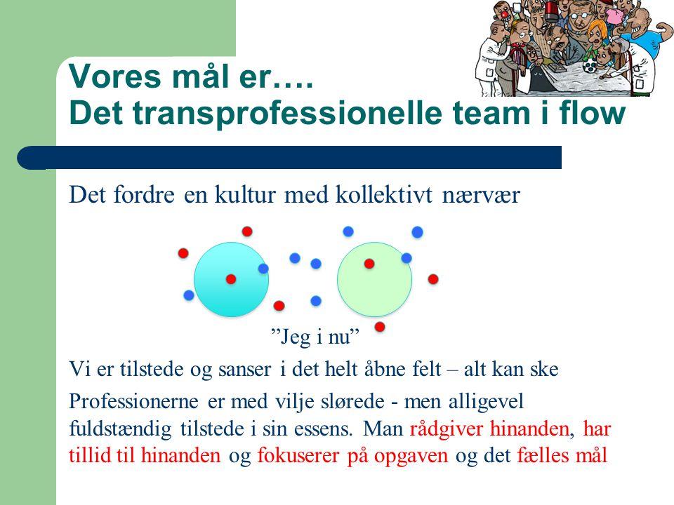 Vores mål er…. Det transprofessionelle team i flow