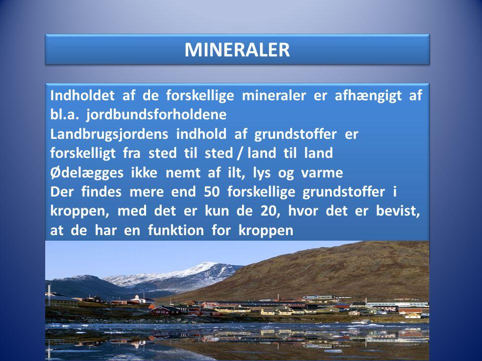 MINERALER Indholdet af de forskellige mineraler er afhængigt af bl.a. jordbundsforholdene.