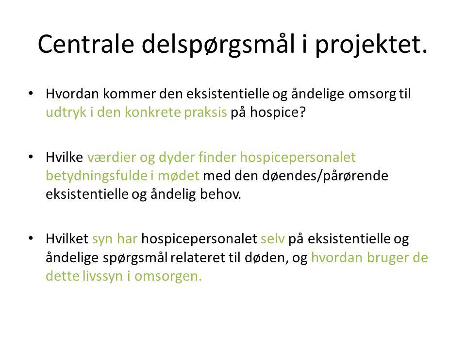 Centrale delspørgsmål i projektet.