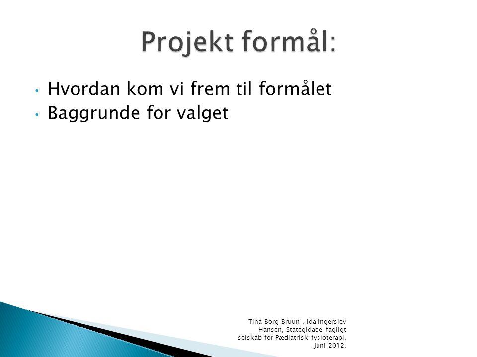 Projekt formål: Hvordan kom vi frem til formålet Baggrunde for valget