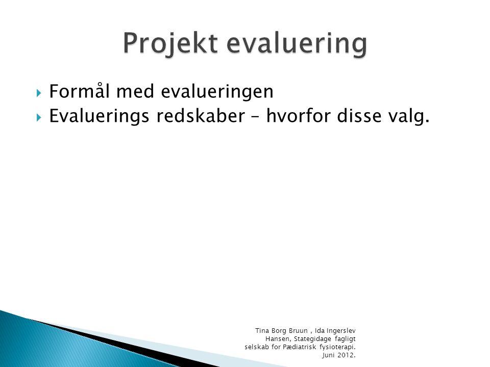 Projekt evaluering Formål med evalueringen