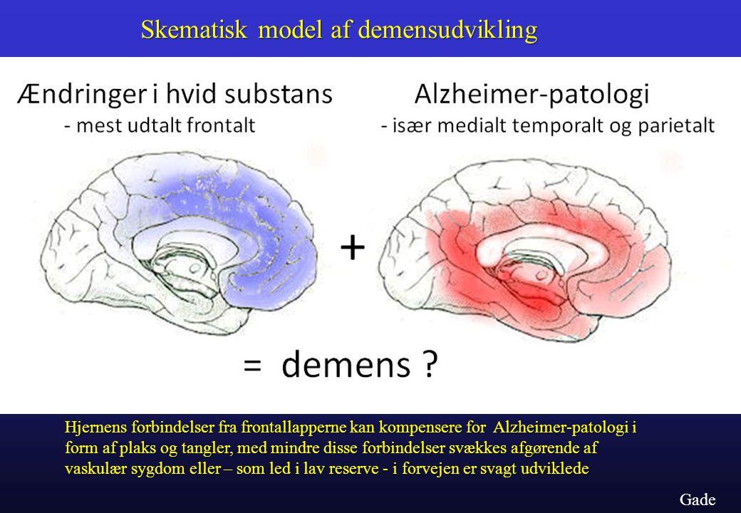 Skematisk model af demensudvikling