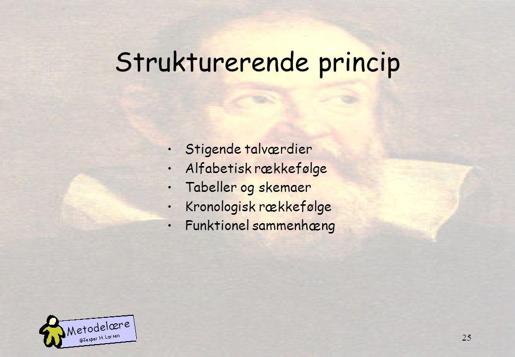 Strukturerende princip