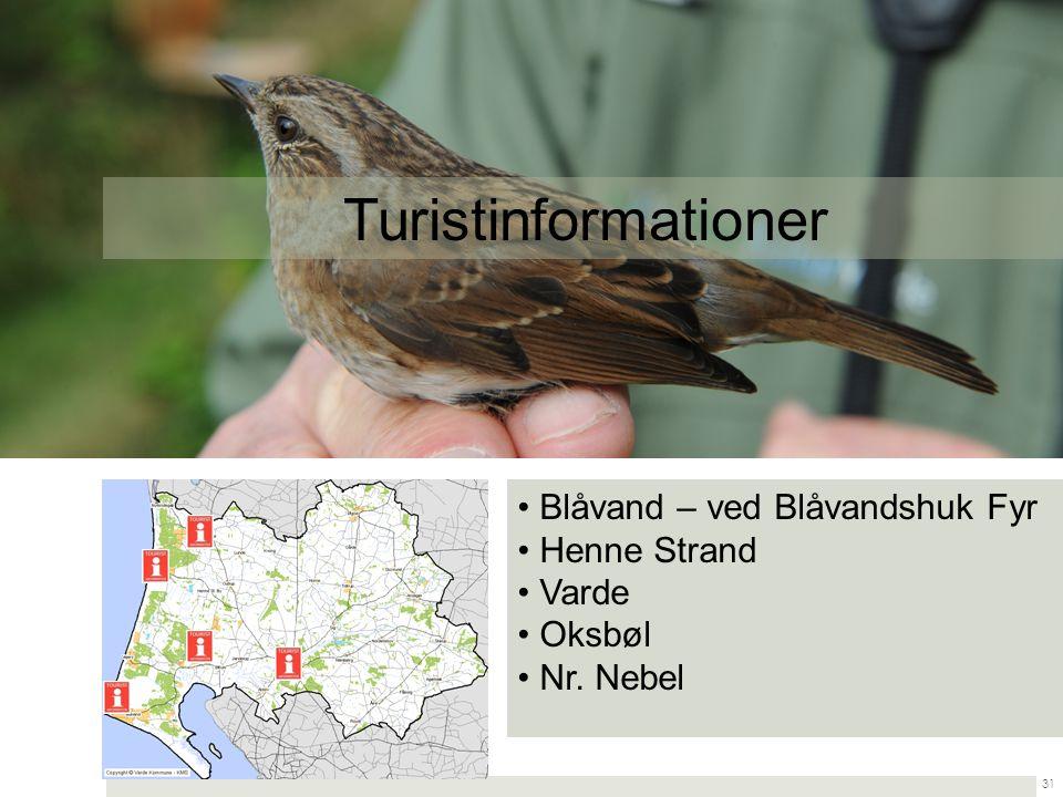 Turistinformationer Blåvand – ved Blåvandshuk Fyr Henne Strand Varde