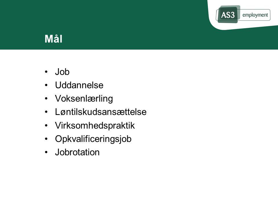 Mål Job Uddannelse Voksenlærling Løntilskudsansættelse