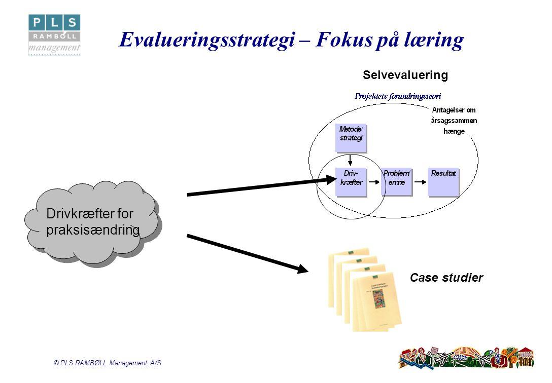Evalueringsstrategi – Fokus på læring