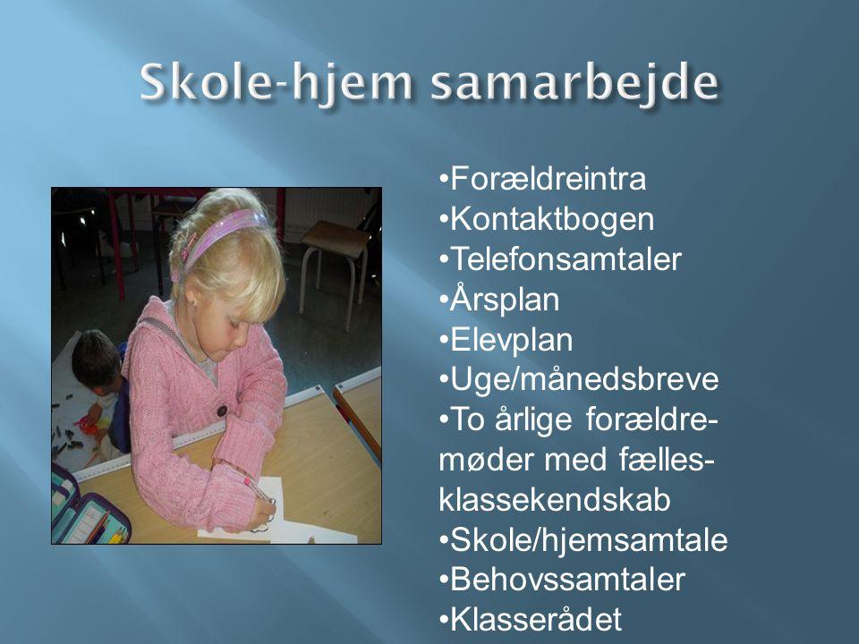 Skole-hjem samarbejde