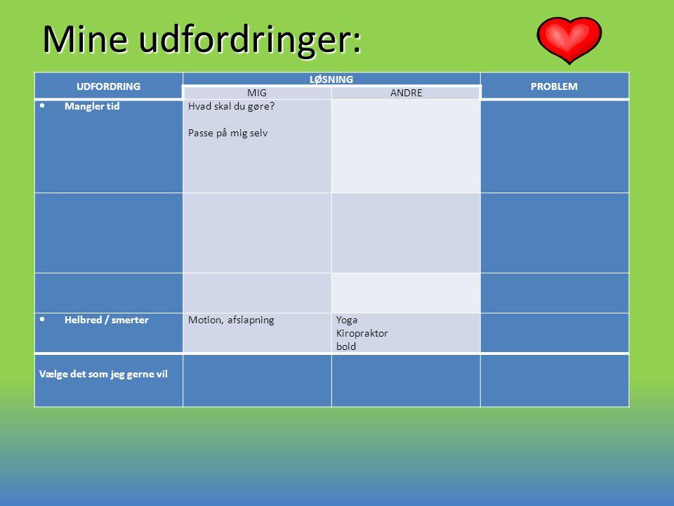 Mine udfordringer: UDFORDRING LØSNING PROBLEM MIG ANDRE Mangler tid