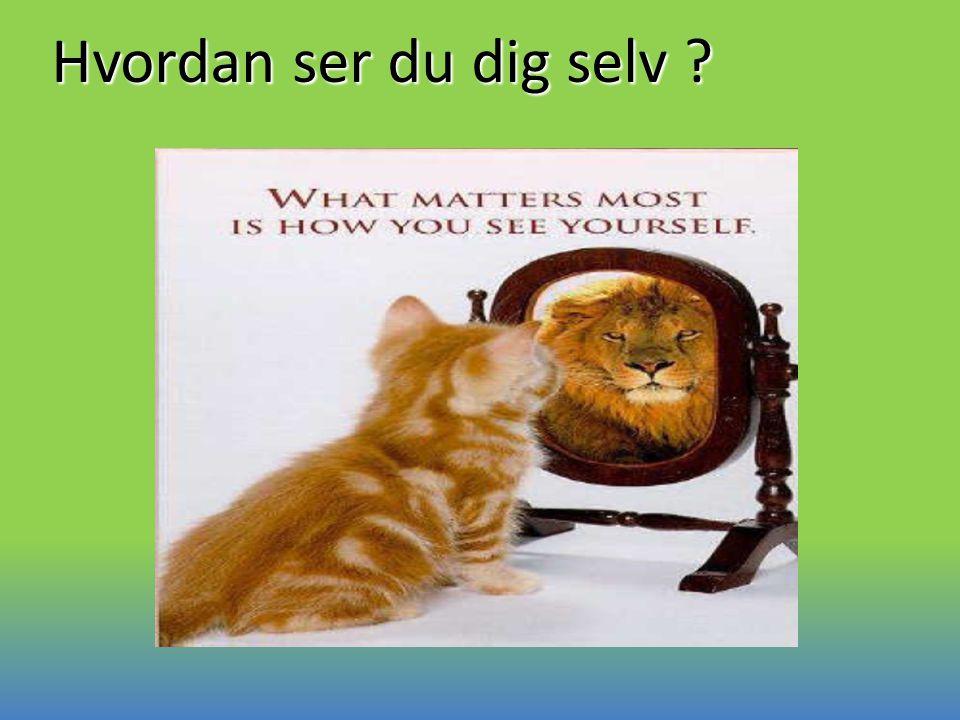 Hvordan ser du dig selv