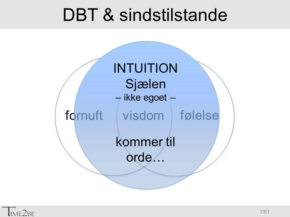 DBT & sindstilstande INTUITION Sjælen kommer til orde… fornuft visdom
