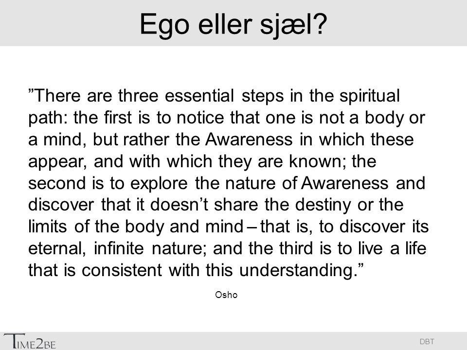 Ego eller sjæl