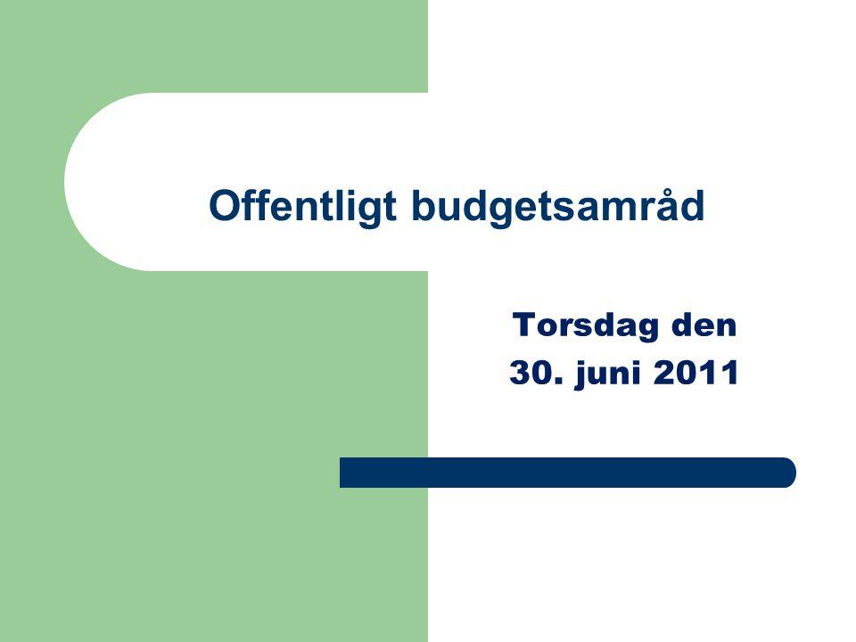 Offentligt budgetsamråd