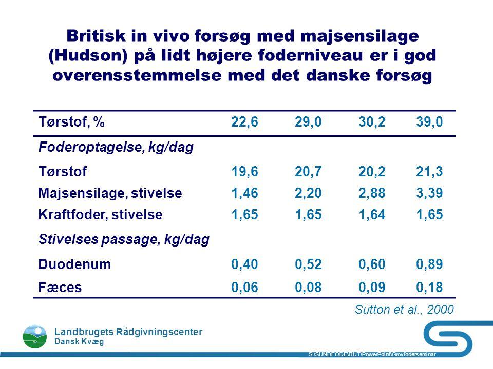 Britisk in vivo forsøg med majsensilage (Hudson) på lidt højere foderniveau er i god overensstemmelse med det danske forsøg