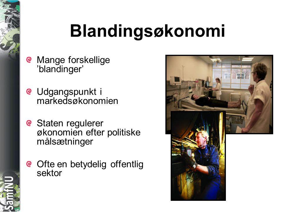 Blandingsøkonomi Mange forskellige 'blandinger'