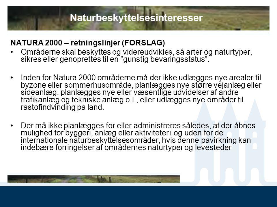 Naturbeskyttelsesinteresser