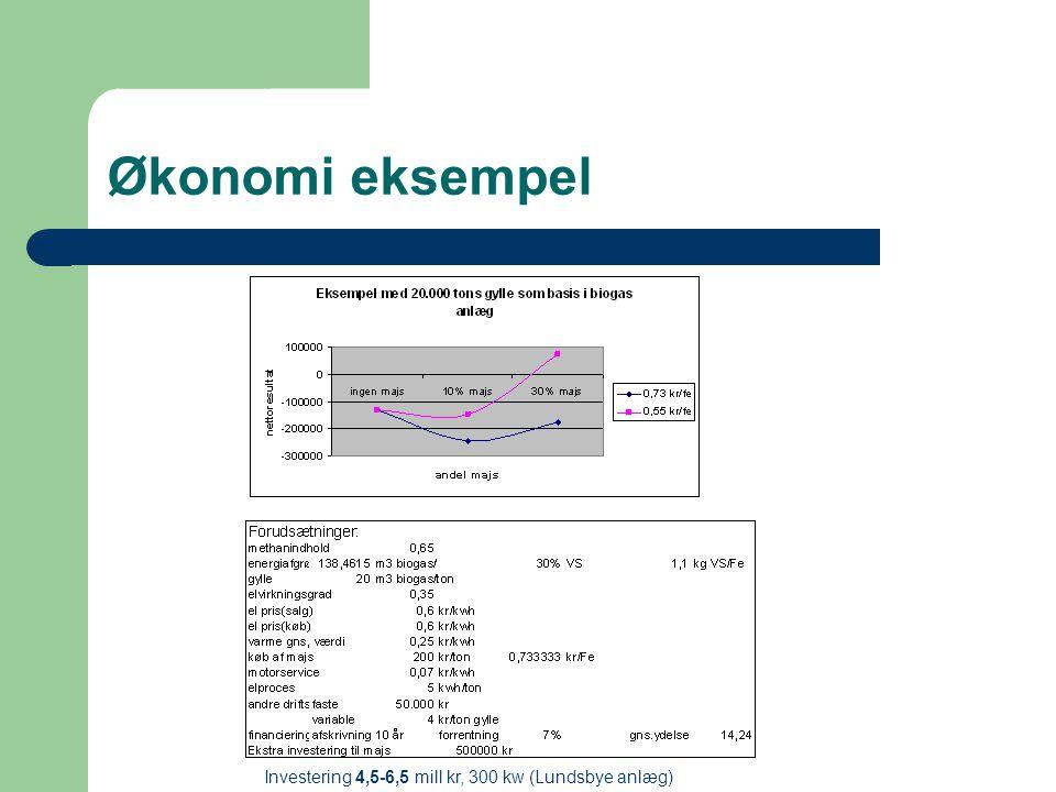 Økonomi eksempel Investering 4,5-6,5 mill kr, 300 kw (Lundsbye anlæg)