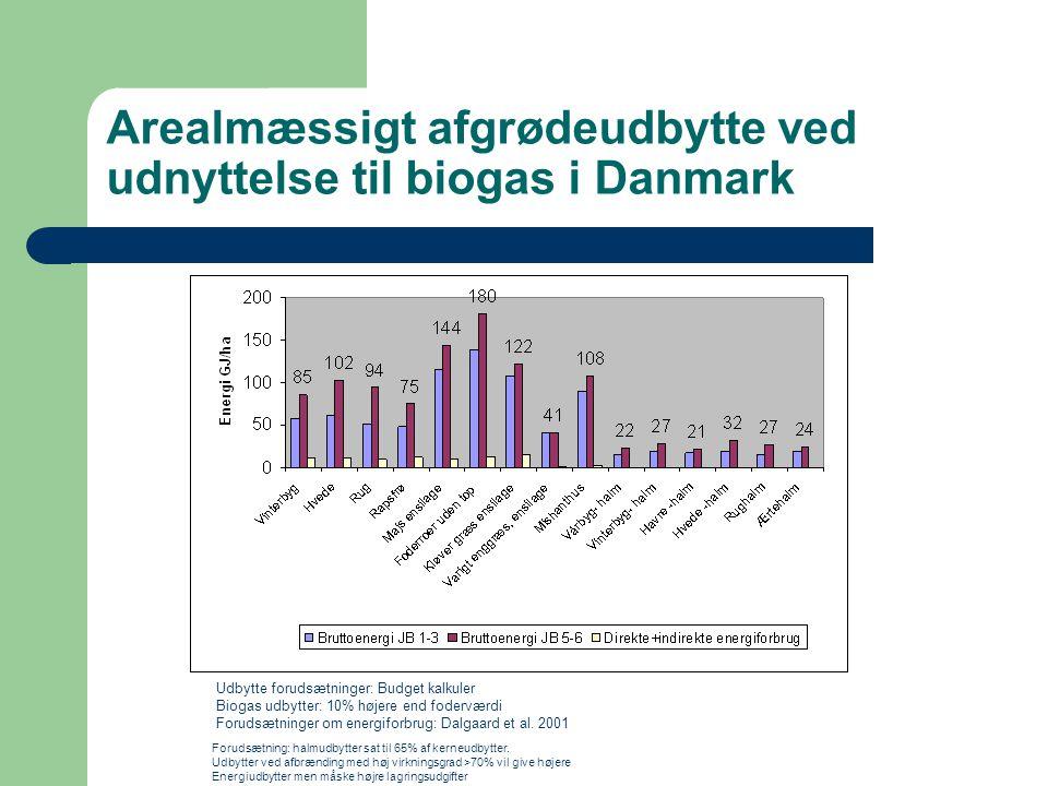 Arealmæssigt afgrødeudbytte ved udnyttelse til biogas i Danmark