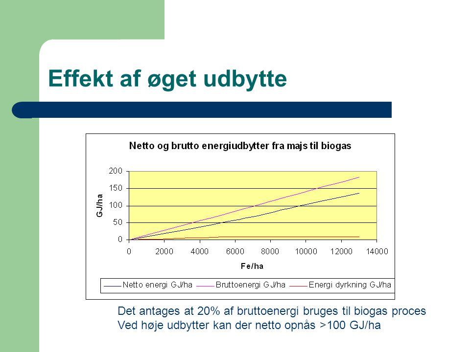 Effekt af øget udbytte Det antages at 20% af bruttoenergi bruges til biogas proces.