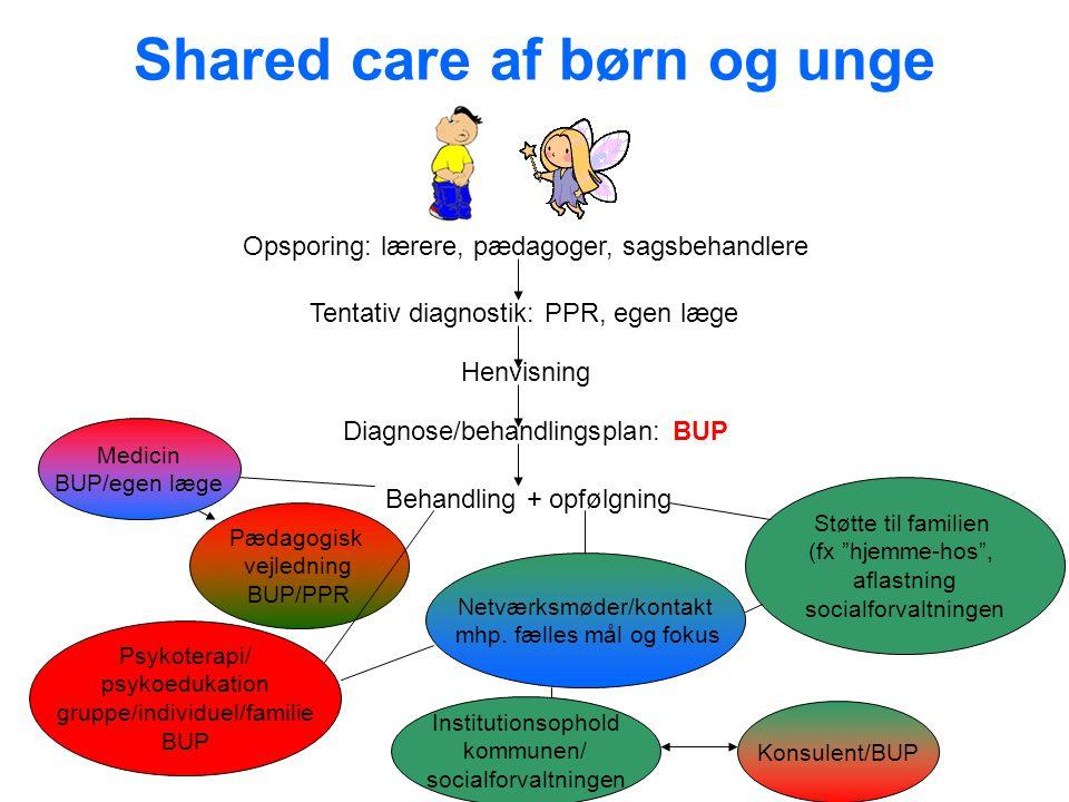 Shared care af børn og unge