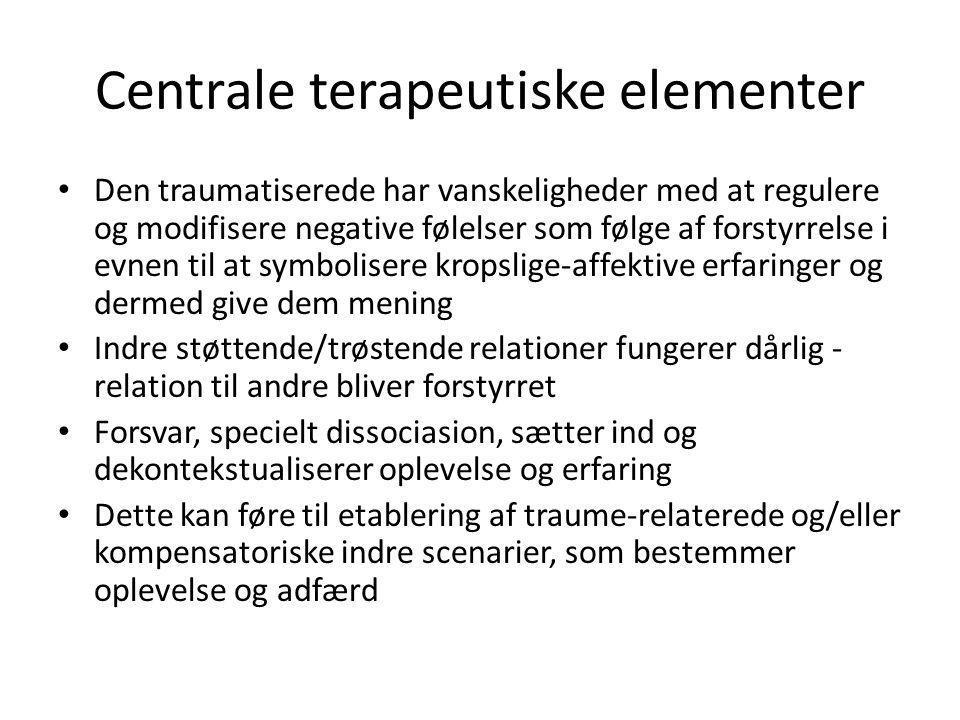 Centrale terapeutiske elementer