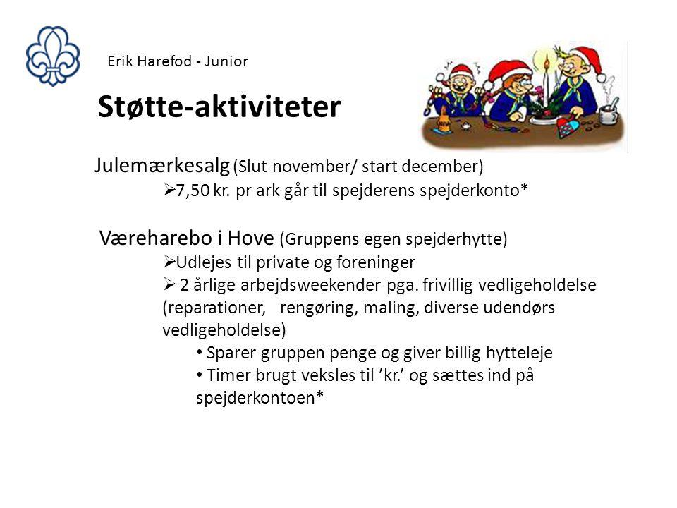 Støtte-aktiviteter Julemærkesalg (Slut november/ start december)