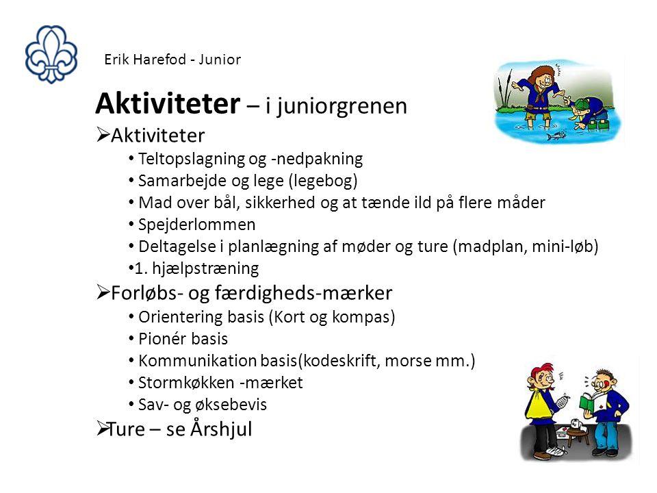 Aktiviteter – i juniorgrenen