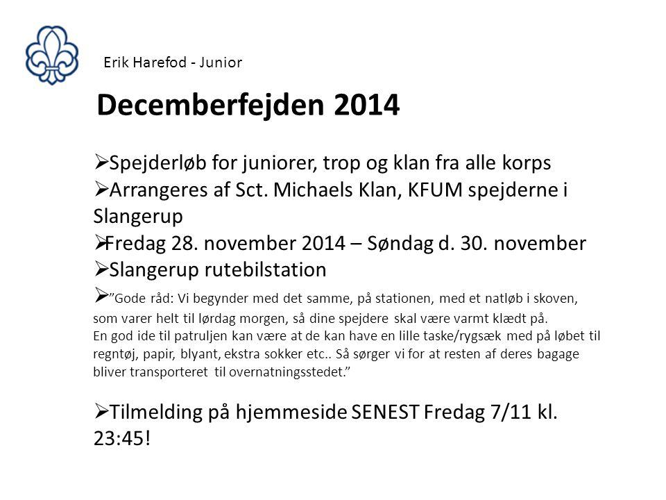 Erik Harefod - Junior Decemberfejden 2014. Spejderløb for juniorer, trop og klan fra alle korps.