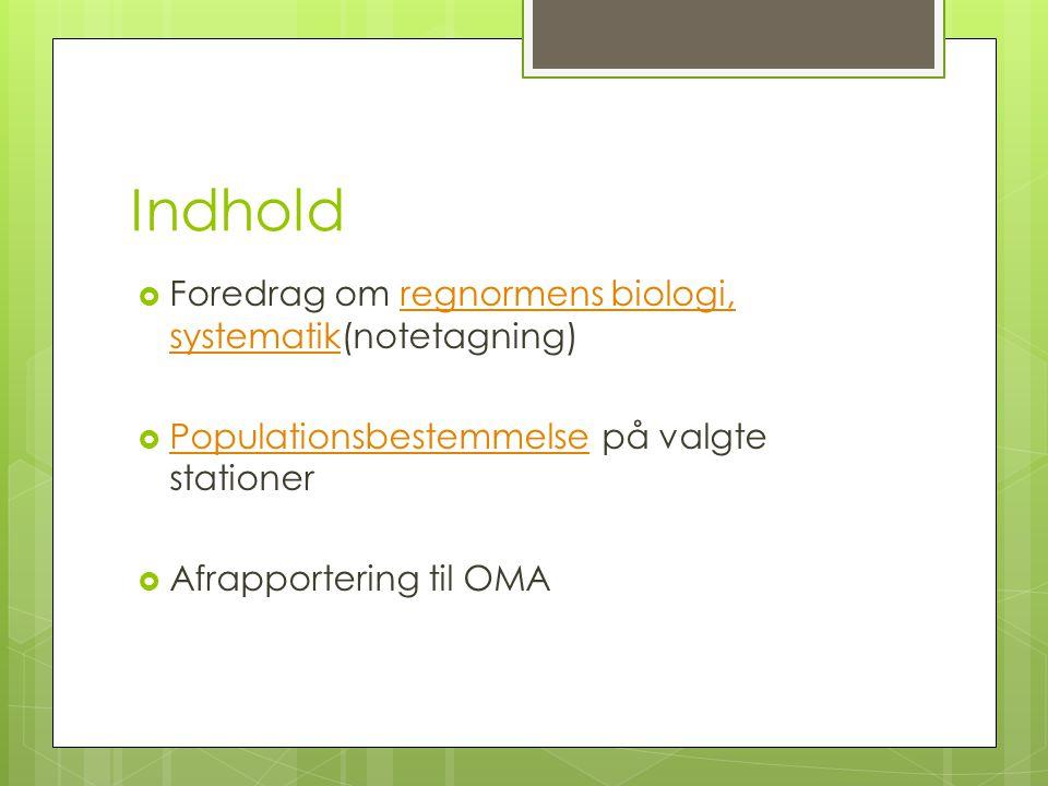Indhold Foredrag om regnormens biologi, systematik(notetagning)
