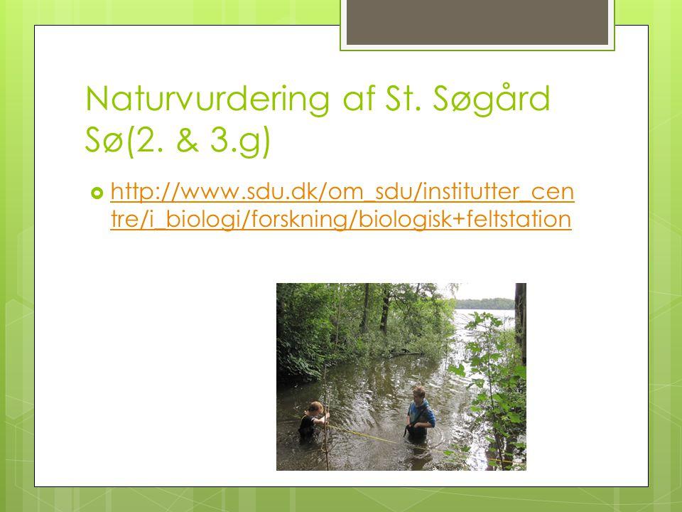Naturvurdering af St. Søgård Sø(2. & 3.g)