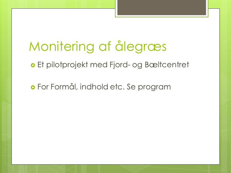 Monitering af ålegræs Et pilotprojekt med Fjord- og Bæltcentret